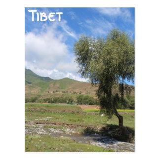 Amdoチベット ポストカード