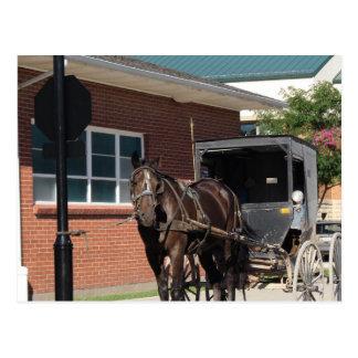 、Amiishの馬停止印で綴りのためにストップ ポストカード