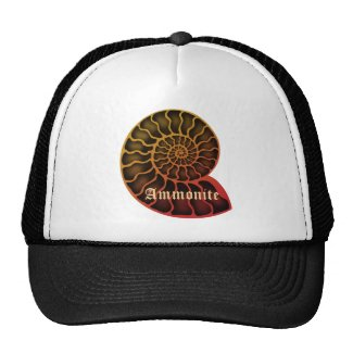 Ammonite メッシュハット