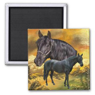 Andalusian馬のプリント マグネット