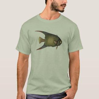 Angelfishの服装 Tシャツ