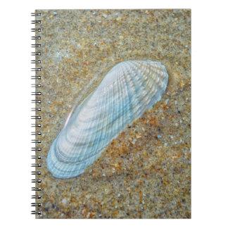 Angelwingの貝殻 ノートブック