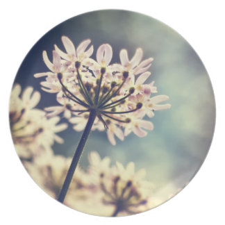 Annes女王のレースの花のプレート プレート