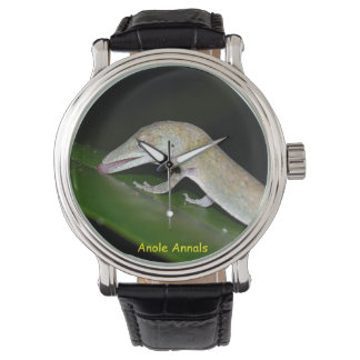 Anoleの腕時計: Anolisのoccultus 腕時計