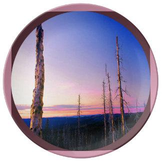 anthony湖の焼跡2 磁器プレート