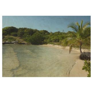 Antiguanのビーチの美しい熱帯景色 ウッドポスター