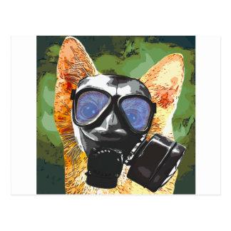 Apoco猫 ポストカード