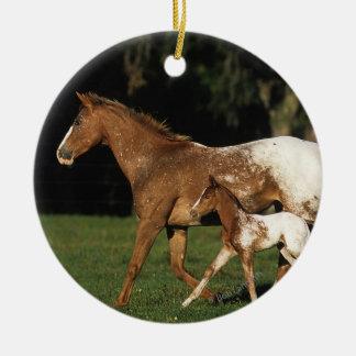 Appaloosaのロバおよび子馬 セラミックオーナメント