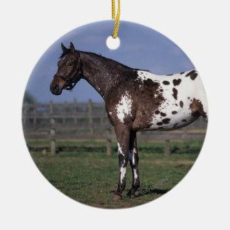 Appaloosaの馬の地位 セラミックオーナメント