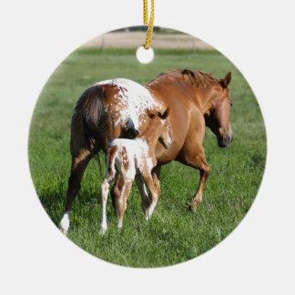 Appaloosaの馬の子馬およびロバ セラミックオーナメント