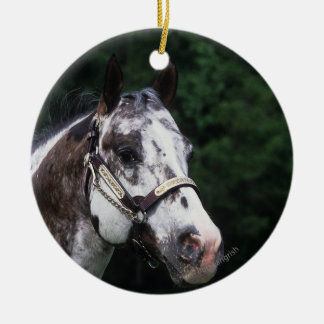 Appaloosaの馬のHeadshot 2 セラミックオーナメント