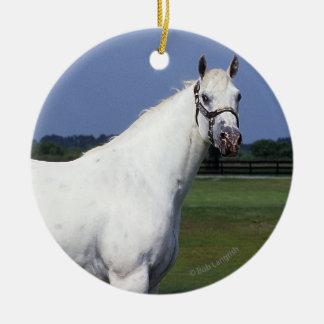 Appaloosaの馬 セラミックオーナメント