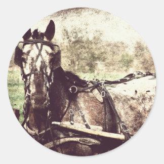 Appaloosaの馬 ラウンドシール