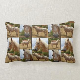 Appaloosaの馬、写真のコラージュのLumbarのクッション ランバークッション