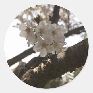 Appleの花 ラウンドシール