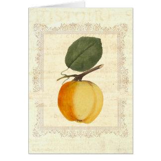 AppleのHistoire -ぼろぼろの上品 カード