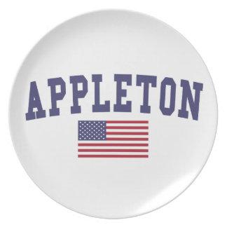 Appleton米国の旗 プレート