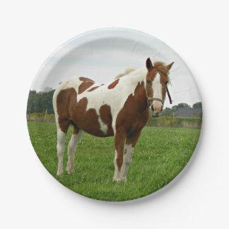 Aquebogueは馬を絵を描きました ペーパープレート