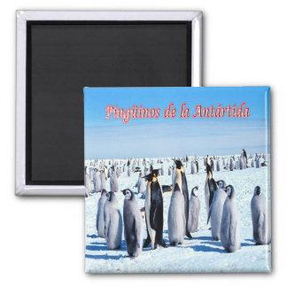 AR -アルゼンチン-南極大陸のペンギン マグネット