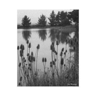Arcata、カリフォルニアの湿地帯(白黒で) キャンバスプリント