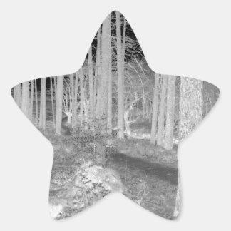 Ardentinyの森林 星シール