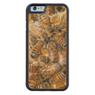 Arloの蜂蜜の農場で保っている蜂 CarvedメープルiPhone 6バンパーケース