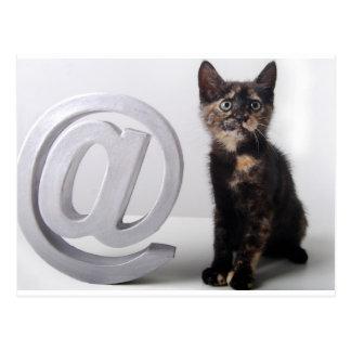 Arobasのほんの少しの子ネコ ポストカード