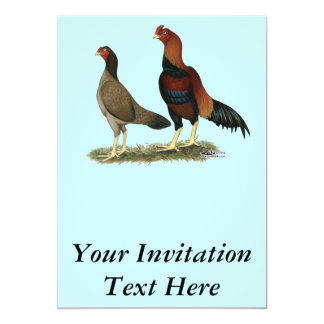 AseelのWheaten鶏 カード