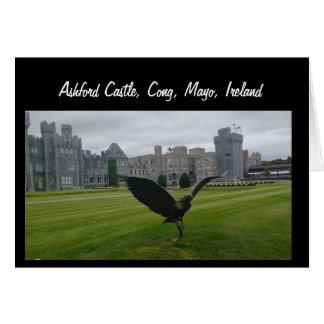 Ashfordの城、Cong、メーヨー カード