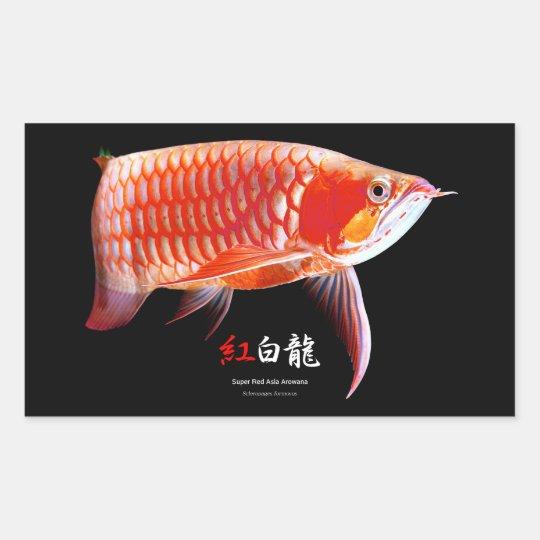 Asian Arowana の優良製品 長方形シール