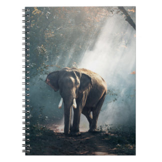 Asian Elephant in a Sunlit Forest Clearing ノートブック