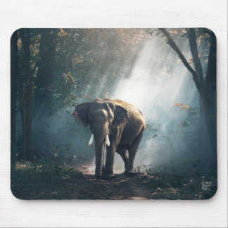 Asian Elephant in a Sunlit Forest Clearing マウスパッド