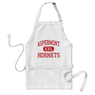 Aspermont -スズメバチ-後輩- Aspermontテキサス州 スタンダードエプロン