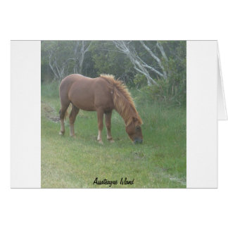 Assateagueの島の子馬の空白のなカード カード
