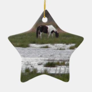 Assateagueの島、VAの野生の子馬 セラミックオーナメント