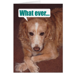 Atitudeのバースデー・カードを持つおもしろいな雑種犬 グリーティングカード