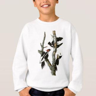 Audubonのアイボリー勘定書を出されたキツツキ スウェットシャツ