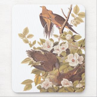 Audubonのカロライナのカメの鳩 マウスパッド