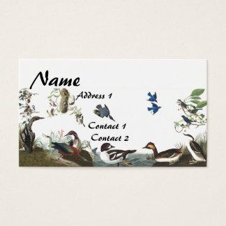 Audubonのコラージュの鳥の野性生物の名刺 名刺