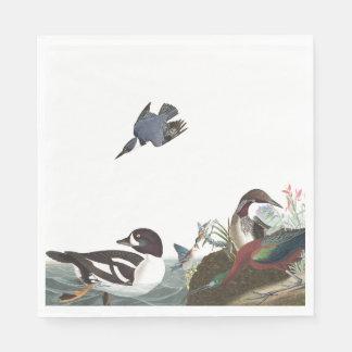 Audubonのコラージュの鳥の野性生物の紙ナプキン スタンダードランチョンナプキン