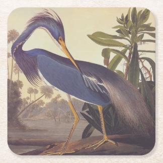 Audubonのルイジアナの鷲かTricoloredの鷲 スクエアペーパーコースター