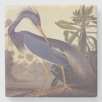 Audubonのルイジアナの鷲かTricoloredの鷲 ストーンコースター
