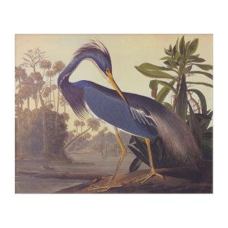 Audubonのルイジアナの鷲のヴィンテージの自然の蔵書票 アクリルウォールアート