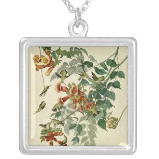 Audubonのルビー色のThroatedハチドリ シルバープレートネックレス