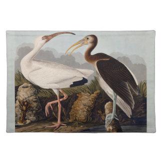 Audubonの白トキ亜科 ランチョンマット