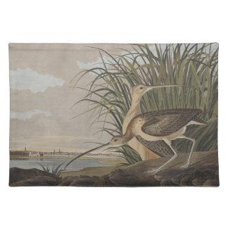 Audubonはサルハマシギの鳥にずっと勘定書を出しました ランチョンマット