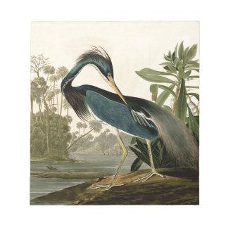 Audubonルイジアナの鷲 ノートパッド