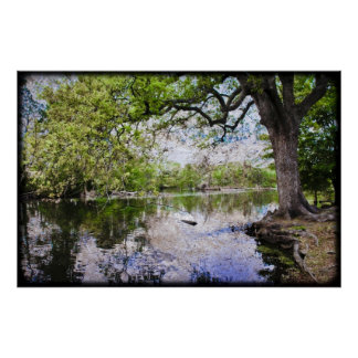 Audubon公園 ポスター