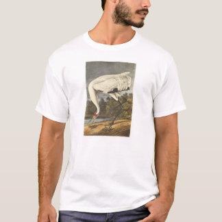 Audubon著アメリカシロヅル Tシャツ