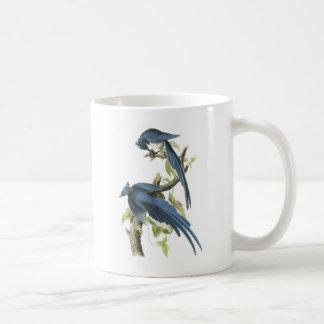 Audubon著カササギジェイ コーヒーマグカップ